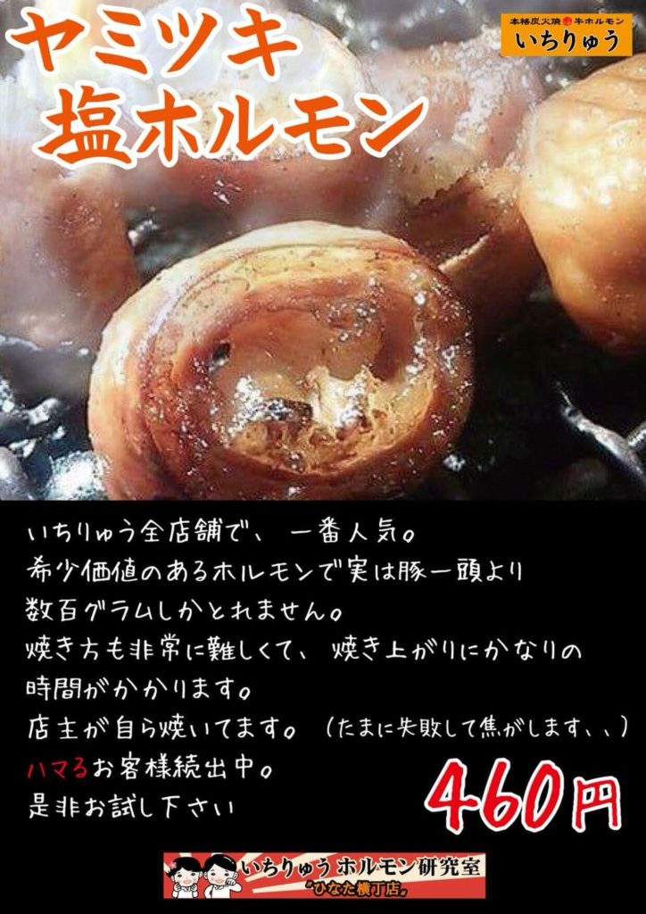 宮崎ひなた横丁いちりゅうヤミツキ塩ホルモン